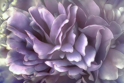 Breeze In Cool Lilac Art Print by Darlene Kwiatkowski