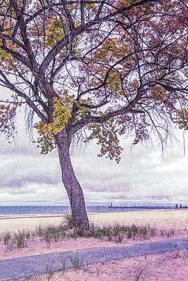 Photograph - Breezy Morning At The Lake In Lavenders by Debra and Dave Vanderlaan