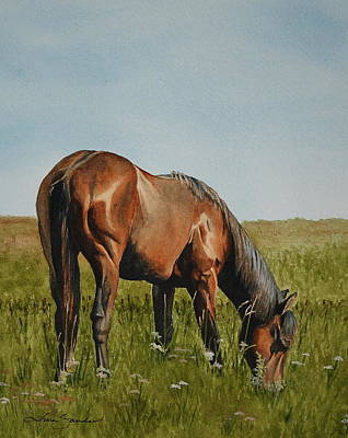Grazing Horse Painting - Breezy by Tina  Sander