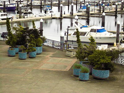 Photograph - Bremerton Marina 1 by David Trotter