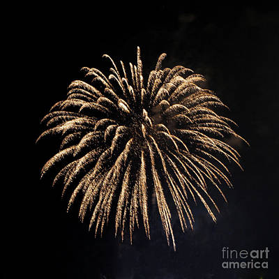 Photograph - Brevard Fireworks 7 by Kevin McCarthy