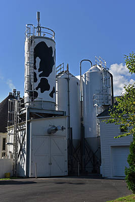 Photograph - Brewery Omme Gang by Mike Martin