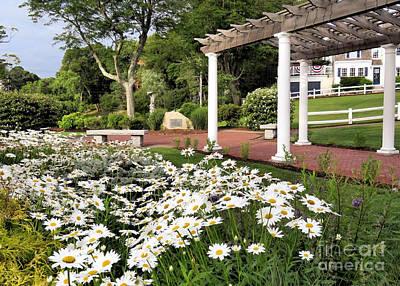 Photograph - Brewster Gardens In July  by Janice Drew