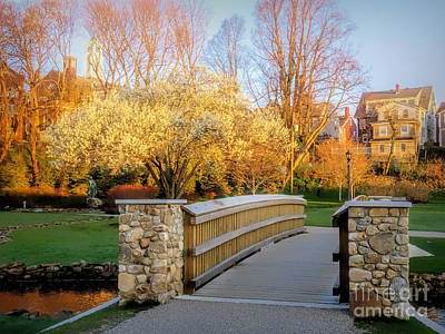 Photograph - Brewster Gardens Spring Sunrise by Janice Drew