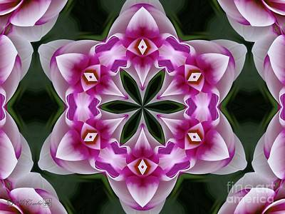 Digital Art - Brian Ray Kaleidoscope by J McCombie