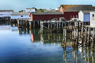 Photograph - Briar Island by Tatiana Travelways
