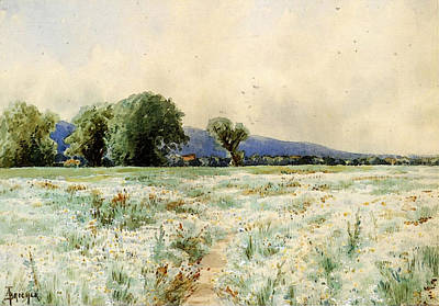 Bricher Alfred Thompson The Daisy Field Art Print
