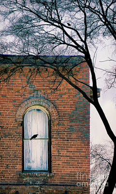 Photograph - Brick Building Window With Bird by Jill Battaglia