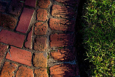Photograph - Brick Path In Afternoon Light by Derek Dean