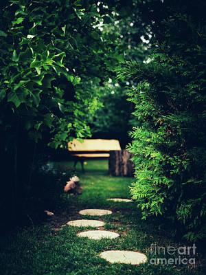 Photograph - Brick Path In The Garden. by Michal Bednarek