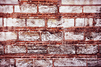 Photograph - Brick Wall Background by Anna Om