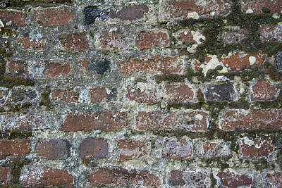 Photograph - Brick Wall by Ed Waldrop