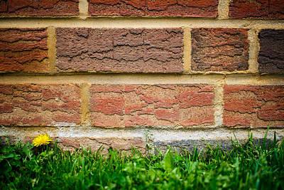 Brick Wall Vignette Art Print by Phillip Schafer