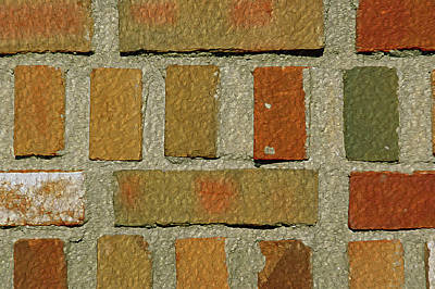Photograph - Brickabrak by Lynda Lehmann