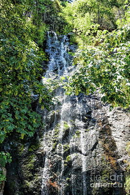 Photograph - Bridal Veil Falls In Green by Joe Lach