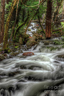 Photograph - Bridalveil Creek 967 by Terry Garvin