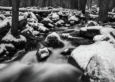 Photograph - Bridalveil Creek by Anthony Michael Bonafede