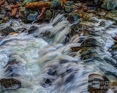Photograph - Bridalveil Creek In Yosemite National Park by Terry Garvin