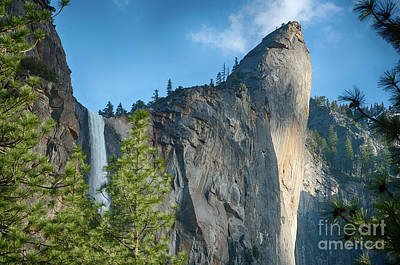 Photograph - Bridalveil Fall Yosemite National Park by Terry Garvin