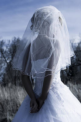 Photograph - Bride by Cindy Singleton