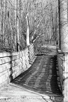 Photograph - Bridge 1 by Mary Bedy