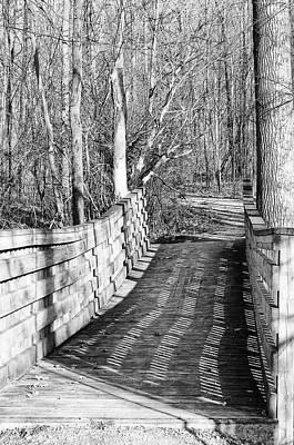 Photograph - Bridge 1 by Mary Bedy