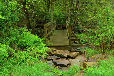 Photograph - Bridge Across A River Is Part Of The Pa At by Raymond Salani III