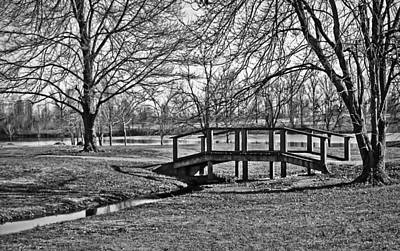 Art Print featuring the photograph Bridge And Branches by Greg Jackson