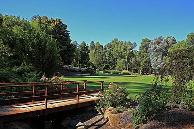 Photograph - Bridge Araluen Botanic Gardens In Winter by Tony Brown