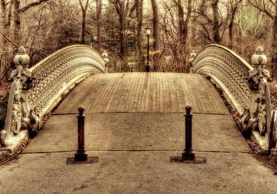Bridge Art Print by Ariane Moshayedi
