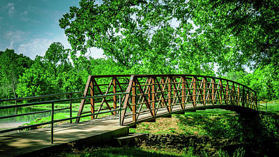 Photograph - Bridge At Ritter Springs by Allin Sorenson