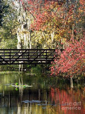 Bridge At Sawgrass Lake Park Art Print