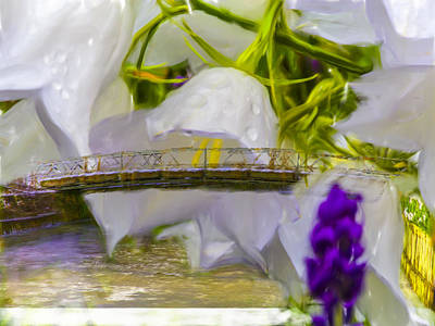 Photograph - Bridge Flower.  by Leif Sohlman