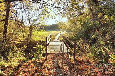 Photograph - Bridge In Autumn by Janette Boyd
