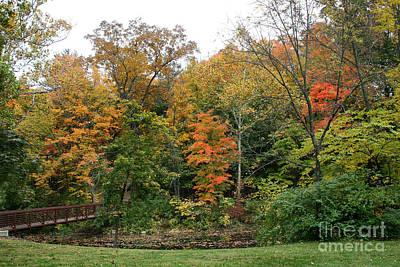 Photograph - Bridge In Autumn by Karen Adams