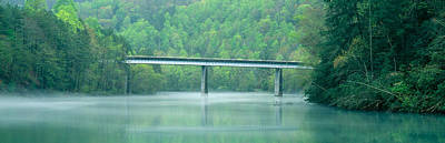 Fir Trees Photograph - Bridge In Fog, Great Smokey Mountain by Panoramic Images