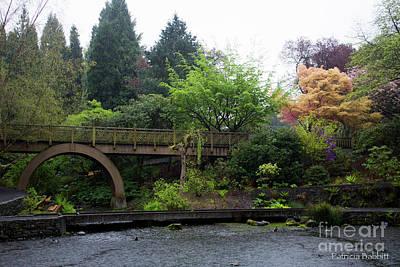 Photograph - Bridge In Morning by Patricia Babbitt