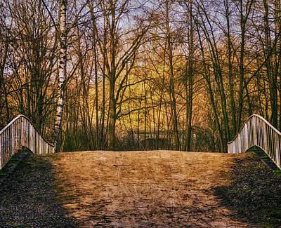 Interior Scene Photograph - Bridge In Park by Wim Lanclus