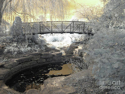 Photograph - Bridge In Shades Of Infrared by Crystal Nederman