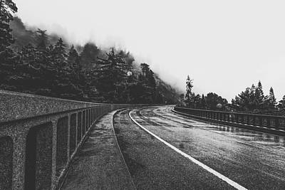 Vermeer Rights Managed Images - Bridge In The Forest In Black And White Royalty-Free Image by Tim LA