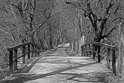 Photograph - Bridge In The Forest by Inge Riis McDonald