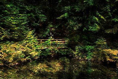 Photograph - Bridge In The Woods by Bill Howard