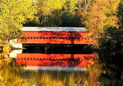 Photograph - Bridge Into Autumn by Angela Davies