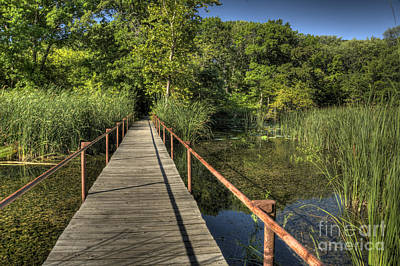 Art Print featuring the photograph Bridge Into The Forest At Lake Murray by Tamyra Ayles
