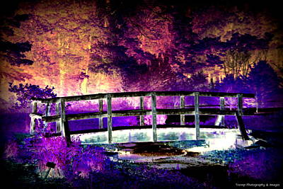 Digital Art - Bridge Of Dreams by Wesley Nesbitt