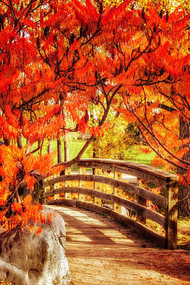 Photograph - Bridge Of Fall by Kristal Kraft