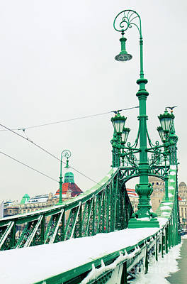Bridge Of Liberty In Budapest Art Print