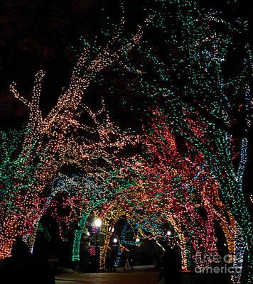 Bridge Of Lighted Trees Original by Nancy Mueller