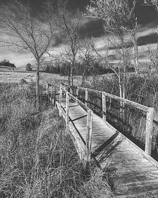 Photograph - Bridge On The Prairie by Michael Oceanofwisdom Bidwell