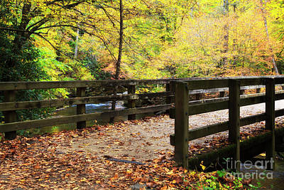 Photograph - Bridge Over A Creek In The Fall by Jill Lang